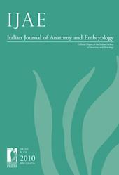 IJAE : Italian Journal of Anatomy and Embryology -  - Firenze : Firenze University Press